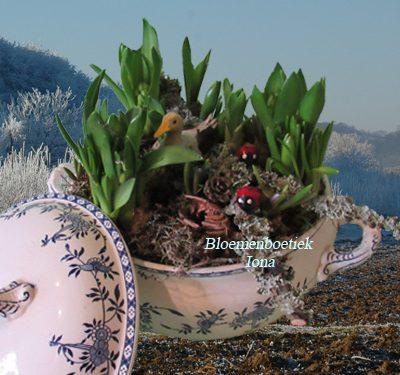Servies schaal vol bloembollen genot bestellen Heemstede