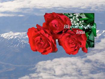 3 luxe red Naomi rozen met gipskruid/Bloemenboetiek Iona