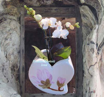 Orchidee opgemaakt in Hart bestellen