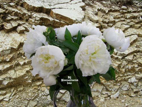 geurende pioenen bestellen bij bloemenboetiek Iona