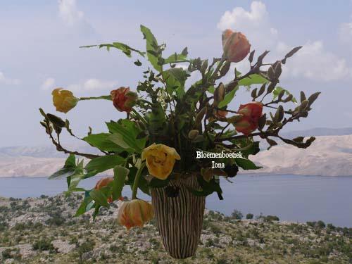 Franse tulpen bestellen bij bloemenboetiek Iona