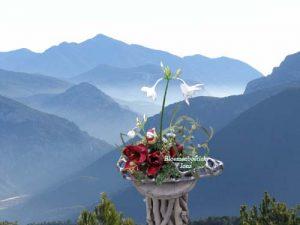 Kerst-vaas/flowers with love