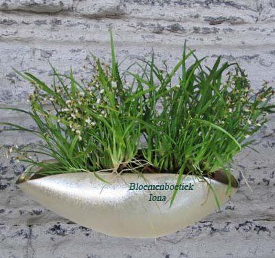 Ovale pot met geurende orchidee/bloemenboetiek Iona