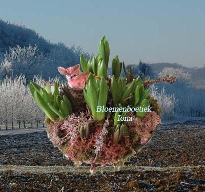Voorjaar bloembakje bestellen bij Bloemenboetiek Iona