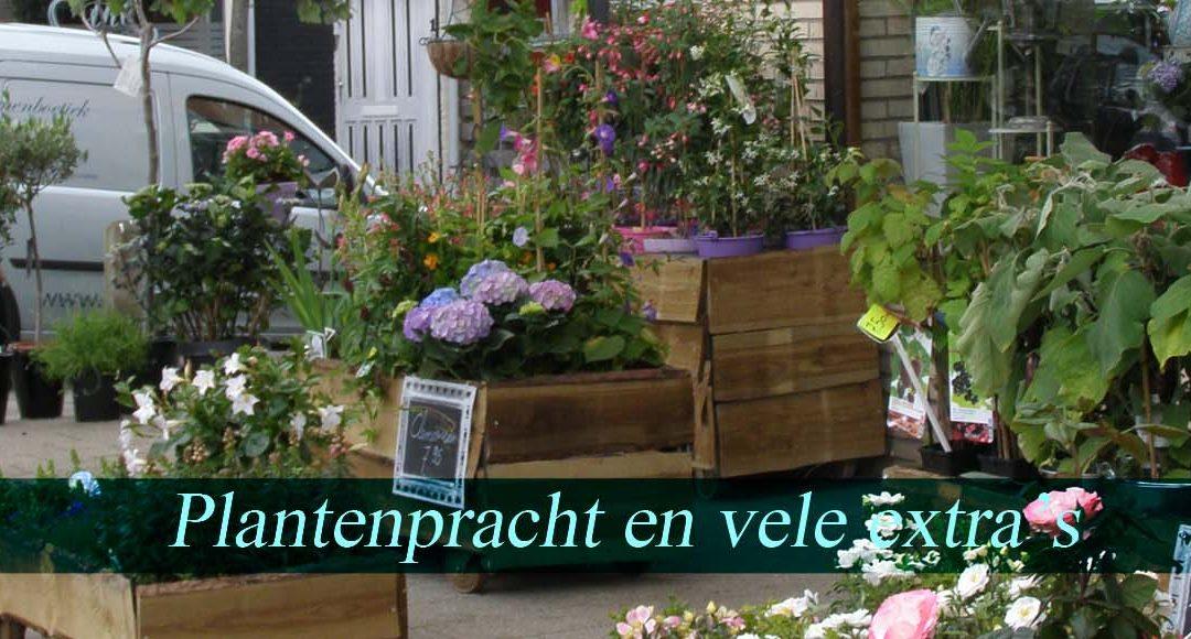 Plantenpracht