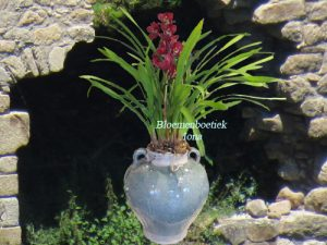 Planten bestellen bij een Bloemenwinkel